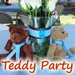 Teddy Party